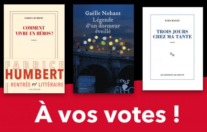 Voter pour un roman